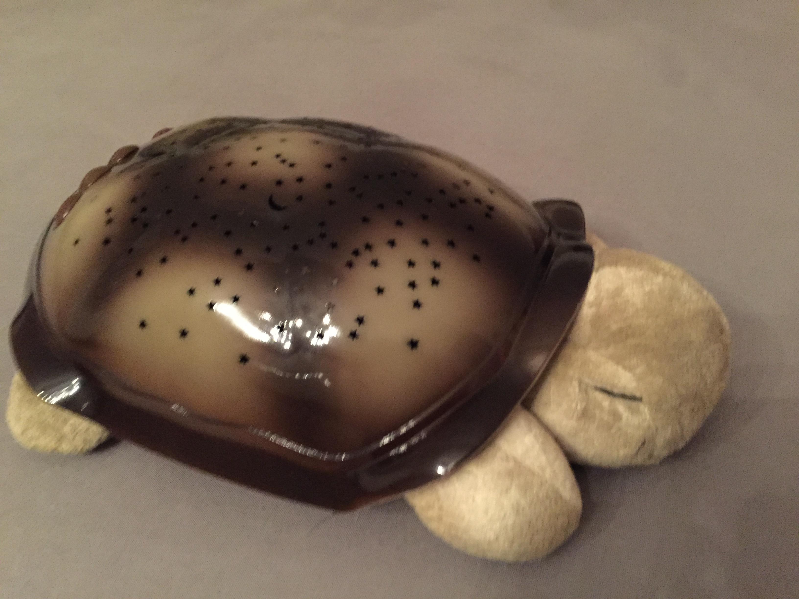 Cloudb Twilight Turtle