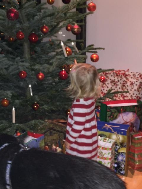 top weihnachtsgeschenke 2015 die unterm weihnachtsbaum zu. Black Bedroom Furniture Sets. Home Design Ideas