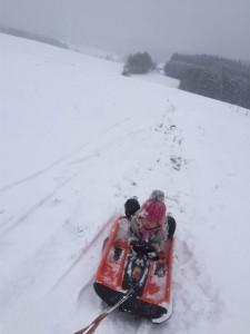 Rodelschlitten, zweisitzer, rodel für kinder, rodel für erwachsene und kinder, schnee, bob, zweisitzer, rennrodel, rodeln im schnee, rodelgebiet,