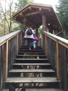 Und hoch geht es, insgesamt mussten wir 750 Stufen bewältigen. Ohne die am Aussichtsturm.