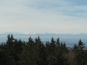 Und da waren sie schon, unsere geliebten Alpen. Dank des Föhnwindes bestens zu erkennen.
