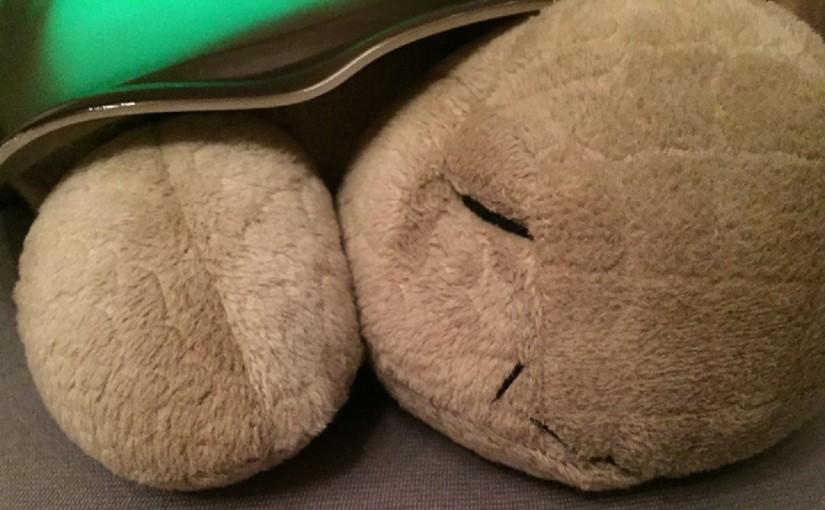 CloudB Twilight Turtle Nachtlicht – die perfekte Babyeinschlafhilfe