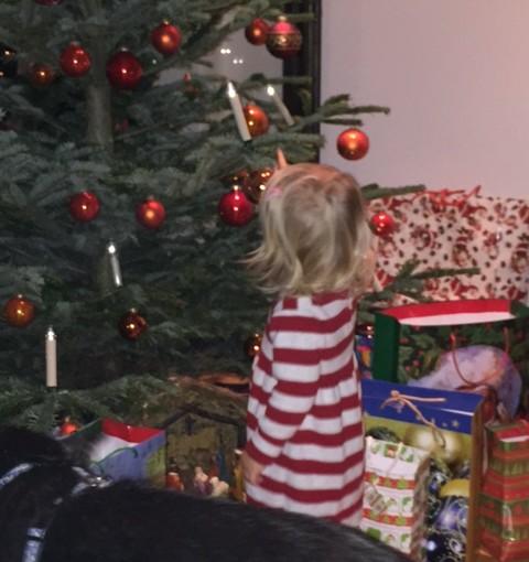 Top-Weihnachtsgeschenke 2015 die unterm Weihnachtsbaum zu finden sind