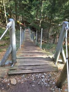 Bevor wir aber auf den großen Waldspielplatz durften mussten wir erst noch eine Hängebrücke überqueren.