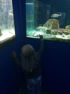 Porec Aquarium