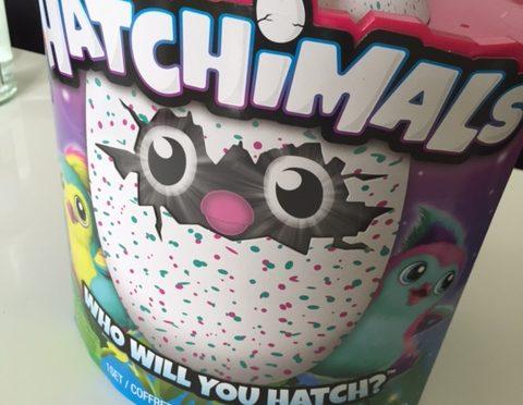Hatchimals – der Top-Weihnachtsgeschenke-Favorit?