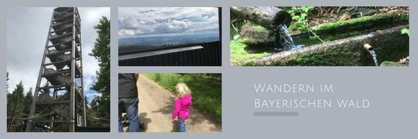 Wandern mit Kindern im Bayerischen Wald – Das verschwundene Dorf + Haidel-Aussichtsturm