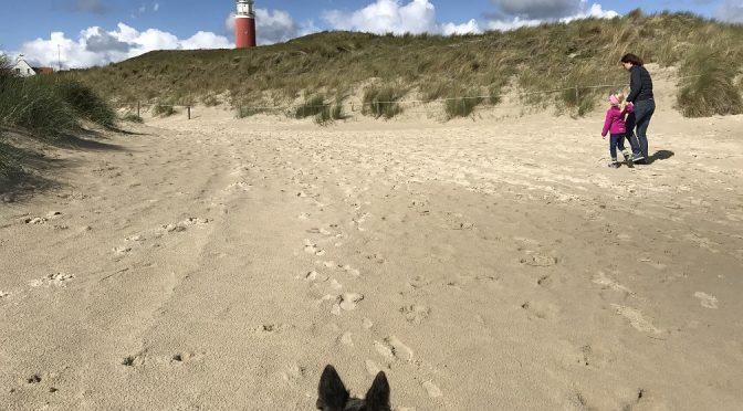 Was kann man mit Kind und Hund auf Texel ( Holland) machen?