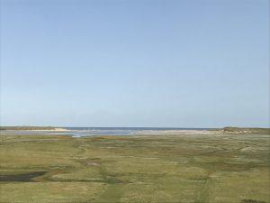 Urlaub auf Texel De Slufter