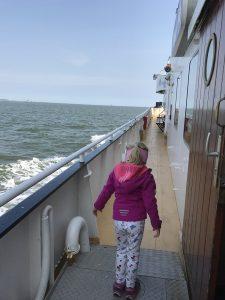 Urlaub auf Texel Robbentour