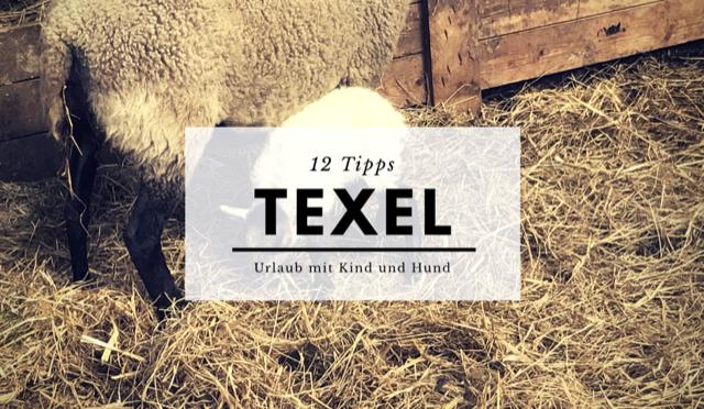 12 Tipps für Urlaub auf Texel mit Kind und Hund