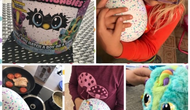 HatchiBabies Hatchimals 2018